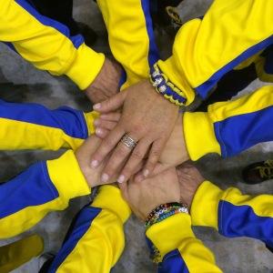 Svenska laget NM 2015